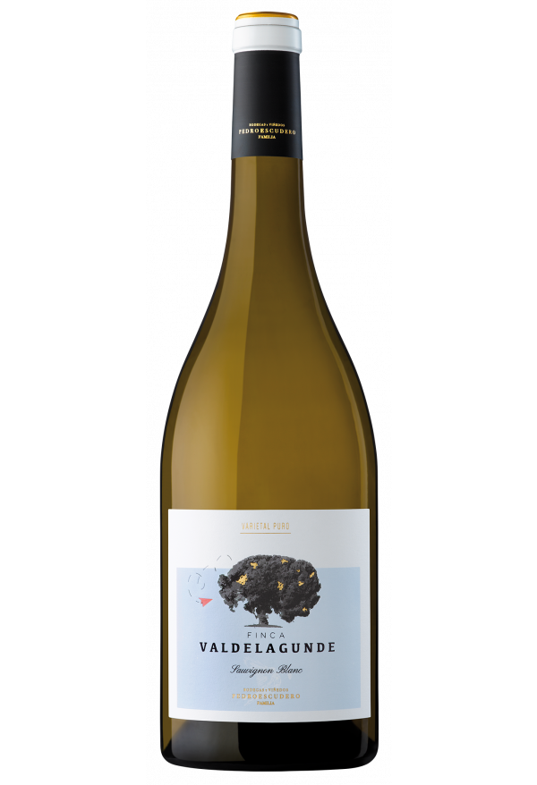 Valdelagunde Sauvignon Blanc